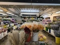wholesale floral distributor with - 1