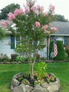 landscaping company suffolk county - 2