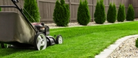 established profitable lawn maintenance - 1