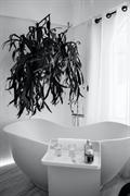wholesaler of luxury plumbing - 1