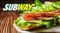 price reduced subway franchise - 1