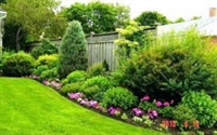 landscaping business new london - 1